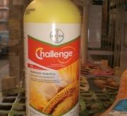 CHALLENGE (1 l.).