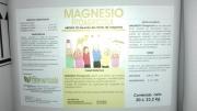 MAGNESIO FITOAGRICOLA (20 l.).