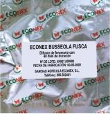 ECONEX BUSSEOLA FUSCA (40 días)