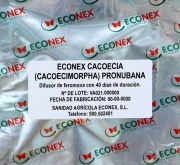 ECONEX CACOECIA (CACOECIMORPHA) PRONUBANA (40...