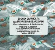 ECONEX GRAPHOLITA (LASPEYRESIA) LOBARZEWSKI (40...