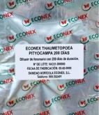 ECONEX THAUMETOPOEA PITYOCAMPA (200 días)