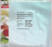 BROCOLI MARATHON F1 NT (2.500 Semillas).