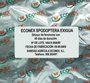 ECONEX SPODOPTERA EXIGUA (40 días)