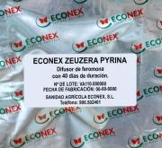 ECONEX ZEUZERA PYRINA (40 días)