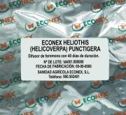 ECONEX HELIOTHIS (HELICOVERPA) PUNCTIGERA (40...