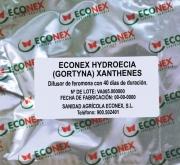 ECONEX HYDROECIA (GORTYNA) XANTHENES (40 días)
