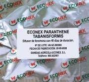 ECONEX PARANTHRENE TABANISFORMIS (40 días)