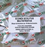 ECONEX SCOLYTUS MULTRISTIATUS (40 días)