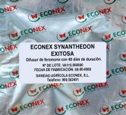 ECONEX SYNANTHEDON EXITOSA (40 días)