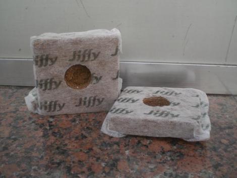 JIFFY COCO BLOCK 100, 10x10 cm., 6,5 cm. Exp.alto (5 Unid.).