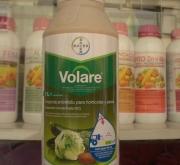VOLARE (1 l.).