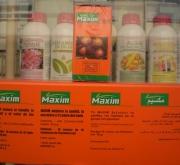 MAXIM (100 Tabletas - Caja de 10x10 tabletas).