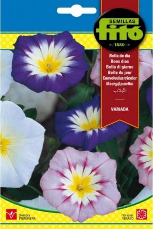BELLA DE DIA VARIADA (8 gr.).