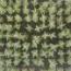 LAVANDA BANDERA (144 Plantas).