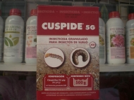 CUSPIDE 5 G [JED] (500 gr.)