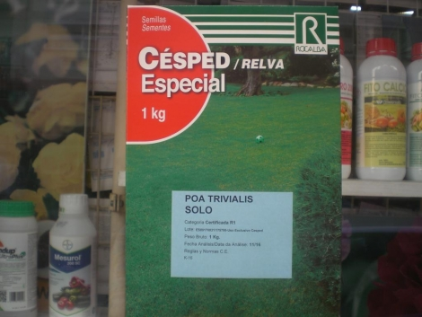 POA TRIVIALIS SOLO (1 Kgr.).
