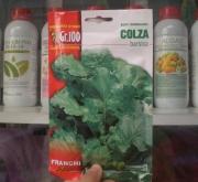 COLZA BARSICA (100 gr.).