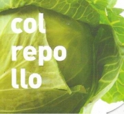 COL REPOLLO ECOLOGICA MSE6
