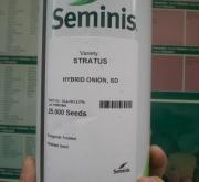 CEBOLLA STRATUS Pildoradas (250.000 Semillas)
