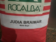 JUDIA BRAIMAR [B]