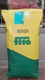 FESTUCA ARUNDINÁCEA MERIDA