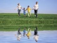 Semillas de Ray Grass Anual ó Multiflorum