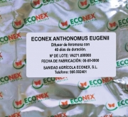 ECONEX ANTHONOMUS EUGENII (40 días)