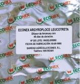 ECONEX ARGYROPLOCE LEUCOTRETA (40 días)