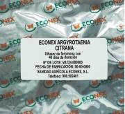 ECONEX ARGYROTAENIA CITRANA (40 días)