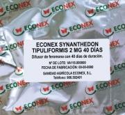 ECONEX SYNANTHEDON TIPULIFORMIS (40 Dias)