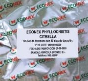 ECONEX PHYLLOCNISTIS CITRELLA (40 días)