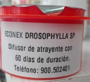 ECONEX DROSOPHILA SP (60 Dias)