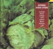 LECHUGA BATAVIA VERDE UTEBO (7 gr.).