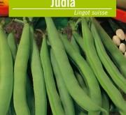JUDÍA LINGOT SUISSE (5 Kgr.).