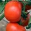 TOMATE AGASI F-1 [T-11092]
