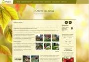 Centro De Jardineria Nueva De Llanes