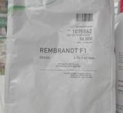ESPINACA REMBRANDT Precisión (50.000 Semillas).