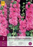 ALCEA ROSEA CHATER'S DOUBLE PINK