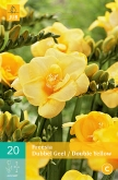 FREESIA DOBLE YELLOW