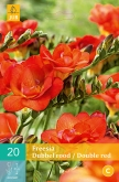 FREESIA DOBLE RED