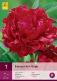 PEONIA RED MAGIC