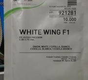 CEBOLLA WHITE WING Precisión (10.000 Semillas).