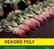 REMOLACHA FORRAJERA ROJA REKORD POLY (500 gr.).