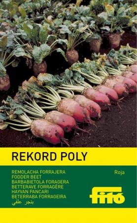 REMOLACHA FORRAJERA ROJA REKORD POLY