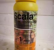 SCALA (1 l.).