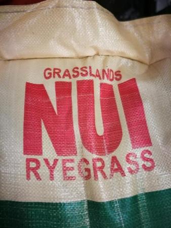 RAY GRASS INGLÉS NUI (25 Kgr.).