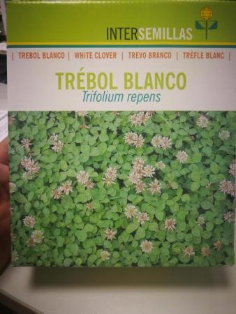 TRÉBOL BLANCO ENANO HUIA Inoculado y Pildorado (1 Kgr.).
