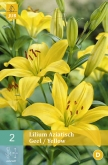 LILIUM YELLOW ASIATICO