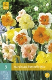 NARCISOS BUTTERFLY MIX